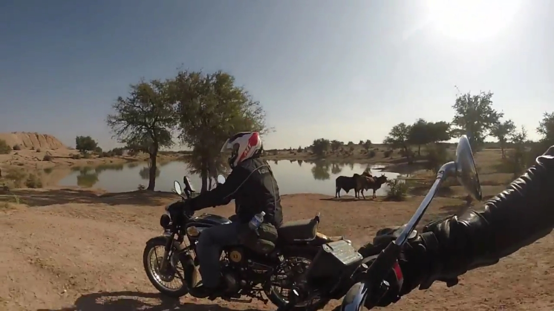 rajasthan winter motorcycling holidays india